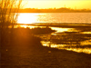茅山湖夕阳美