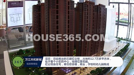 万江共和新城视频图