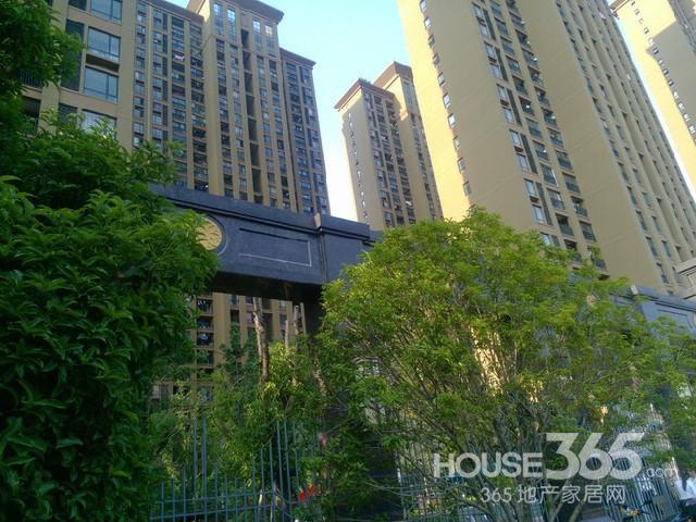 中环城紫荆公馆经典南北通透无税三房好户型诚心出售 可随时看房