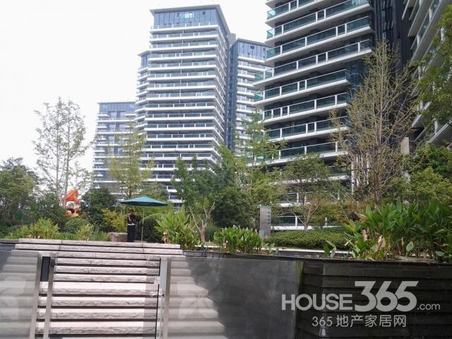 景观 视野/270度景观视野,270度环绕花池,会呼吸的生态建筑,急售房