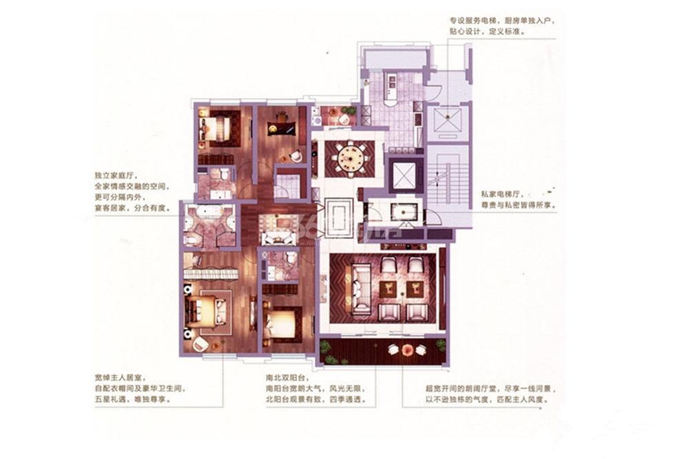 金陵雅颂居项目B1户型261平