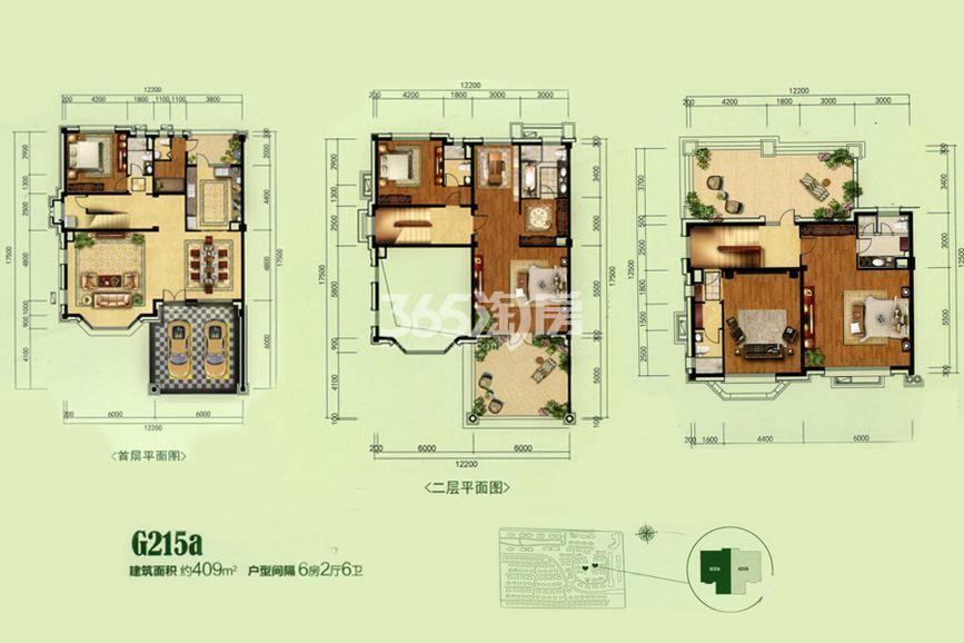 碧桂园别墅G215a户型