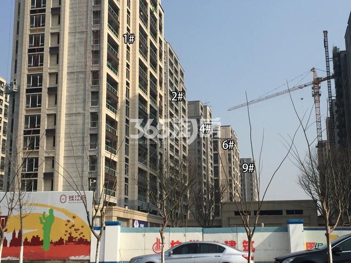 德信大家钱江府1、2、4、6、9号楼施工实景图 2016.1摄