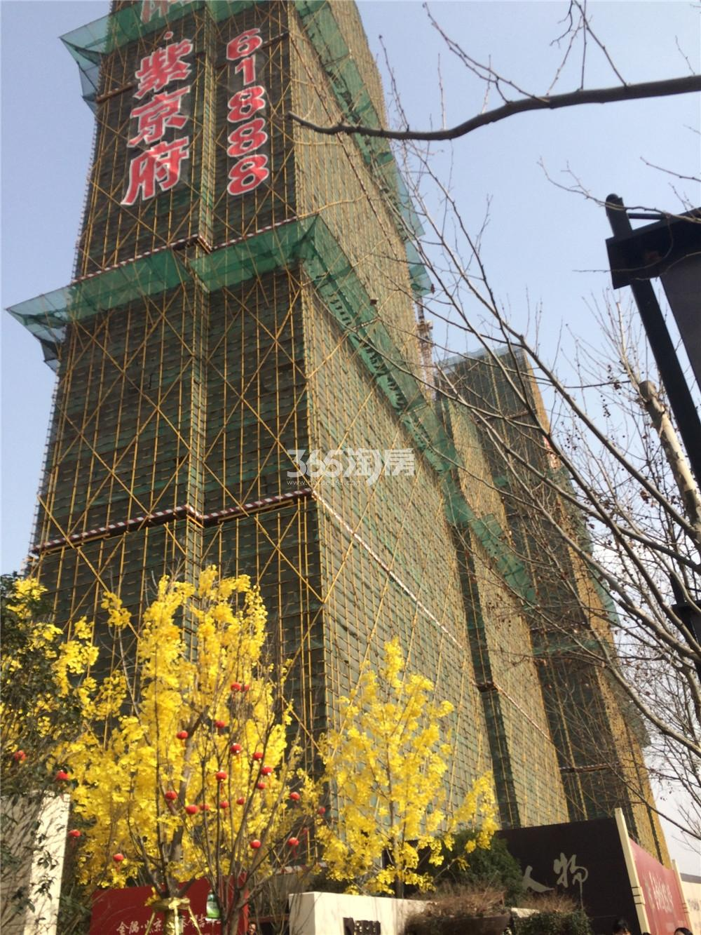 金隅紫京府在建楼栋实景图(2016.2.24)