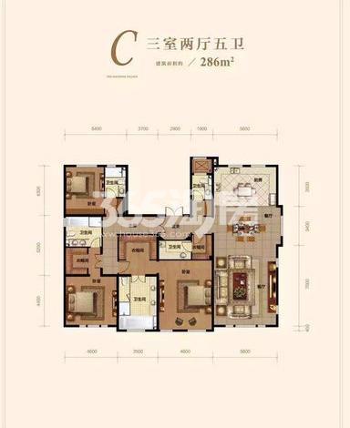 洋房C户型 3室2厅5卫 286㎡ (待售)