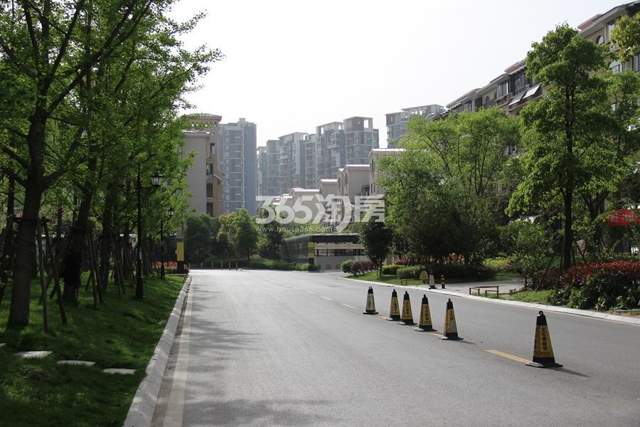 华强城赛纳丽城滨江小区实景(2017.4摄)
