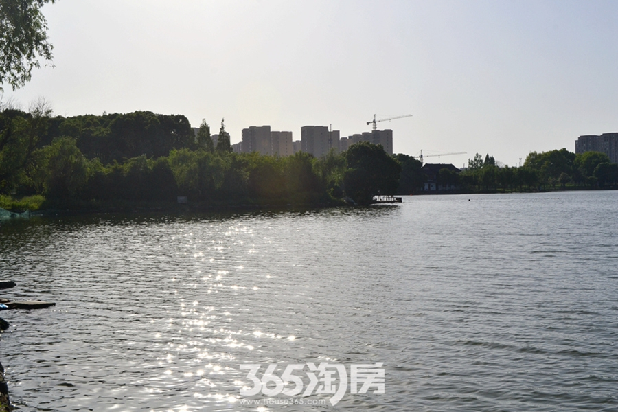 东方蓝海实景图(2017.5摄)