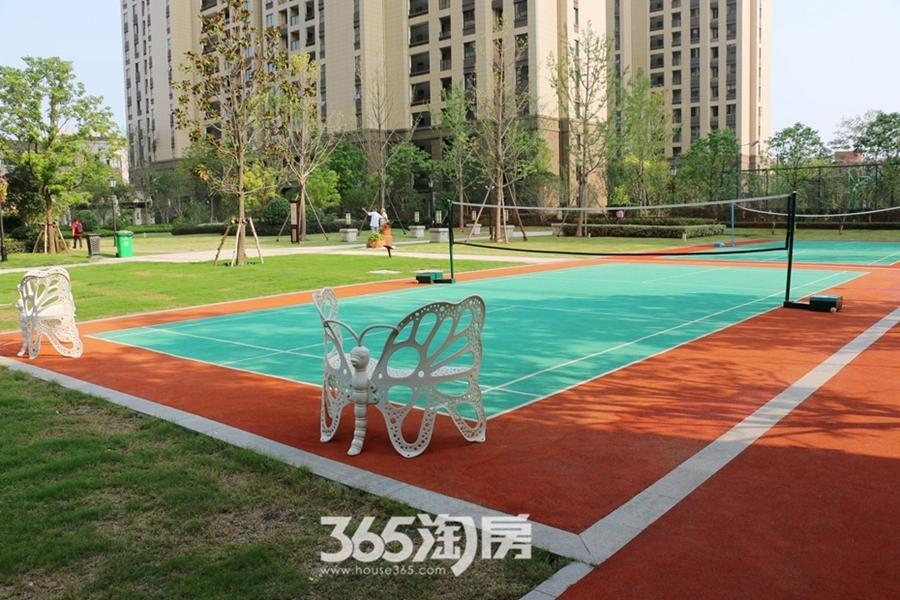伟星公园大道壹号小区球场(2017.9摄)